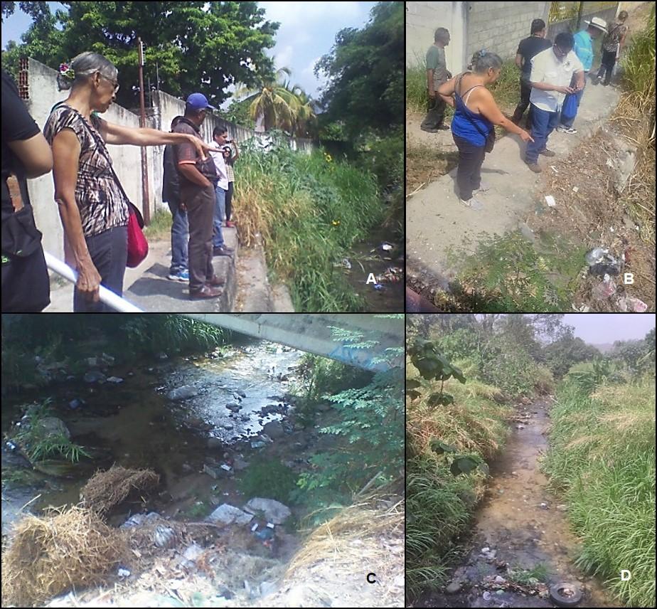 Diagnóstico de condiciones físico-naturales de río Madre Vieja